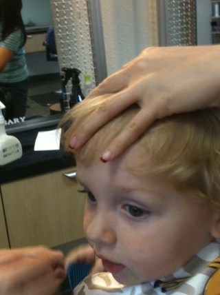 photo of Grandson getting a haircut