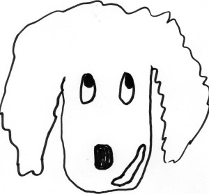 drawing of guilty looking cocker spaniel