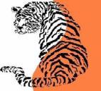 tig Zendictive Logo