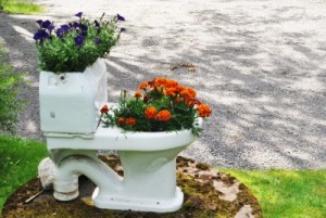 Toilet with flowers Linda Vernon Humor