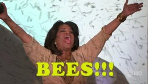 Bees Oprah, linda vernon humor