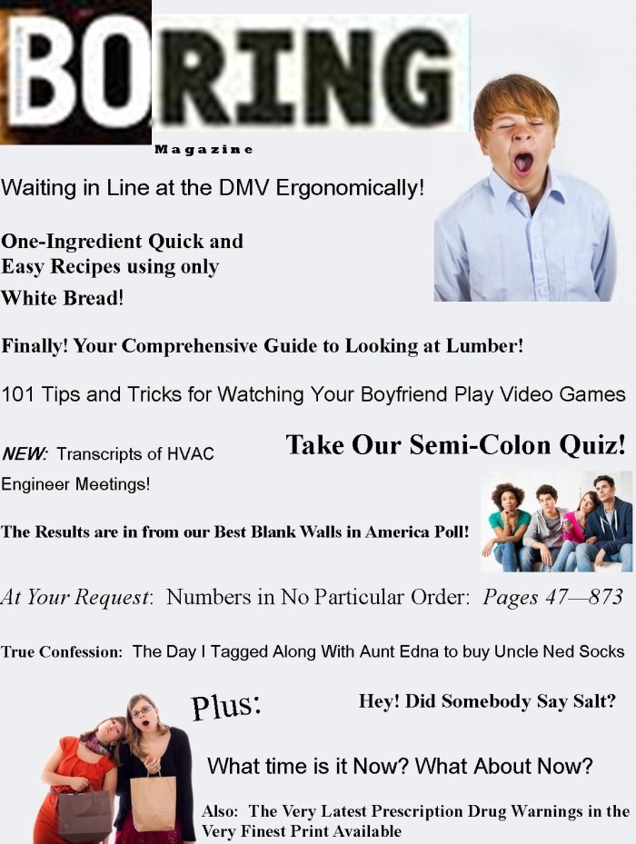 Boring Magazine - By Linda Vernon Humor