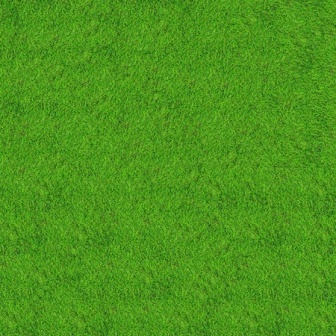 golf course grass