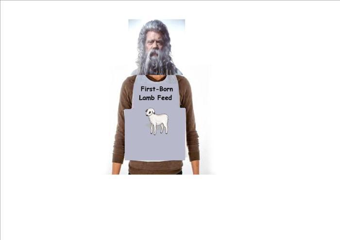 First Born Lamb Feed