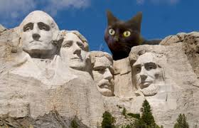 cat mt. rushmore
