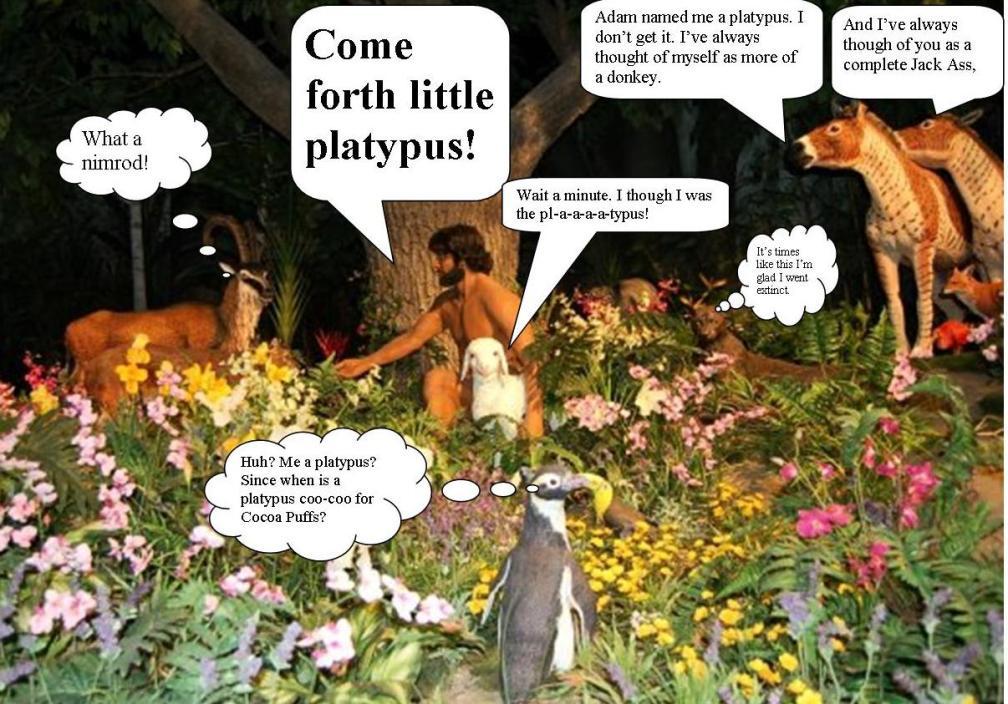 Too Many Platypi